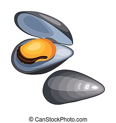 Mussels in shell. Isolated illustration of seafood on white...
