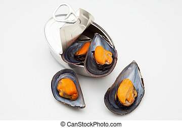 mussels in Tin