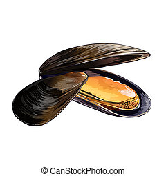 Mussels, Isolated Illustration - Mussels, isolated raster ...
