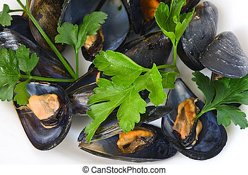 mussels with parsel - Boiled mussel with parsley, oil and ...