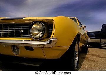 mustang, gelber