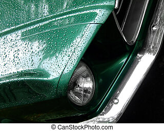 mustang, grün, regen