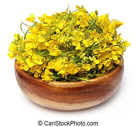 Closeup of mustard flower on wooden bowl