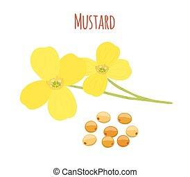 Mustard flower, seeds. Organic condiment. Cartoon flat style. Vector illustration