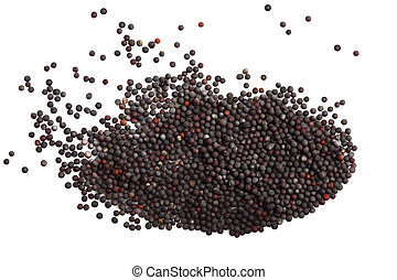 Mustard Green Seeds - Mustard Green Rapes seeds isolated on...