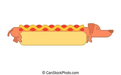 mustard., nourriture, chien, jeûne, bun., chouchou, chaud, teckel, ketchup