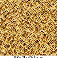 mustard seeds background for your design