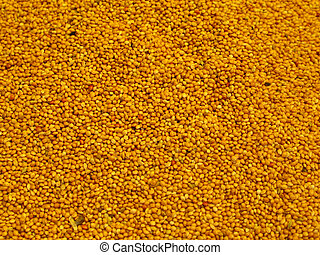 Mustard seeds background (in Istanbul spice market)