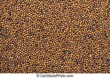 mustard seeds - Mustard seeds texture closeup as a ...