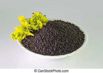Mustard seeds with mustard flower