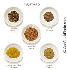 mustards, zbiór, odizolowany