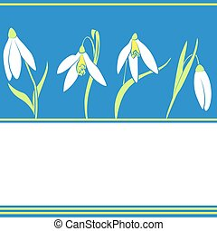 muster, mit, schneeglöckchen, flowers., fruehjahr, hintergrund