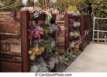 muur, geplante, tuin, verticaal, planken