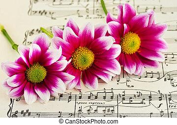muziek, bloemen, blad