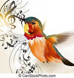 muziek, vector, vogel, het zoemen, achtergrond, opmerkingen