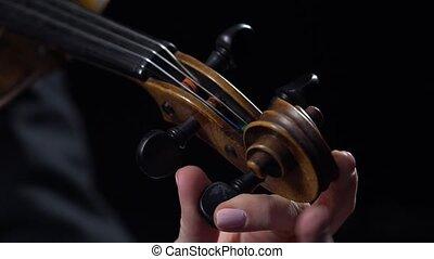 muzyk, do góry, tło., violin., melodie, zamknięcie,...