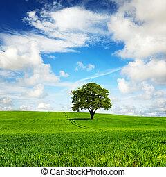 My green planet