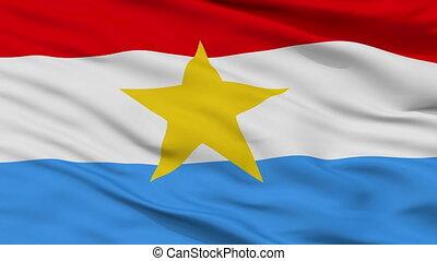 Myanmar Armed Forces Flag Closeup Seamless Loop - Myanmar...
