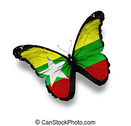 Myanmar flag butterfly, isolated on white