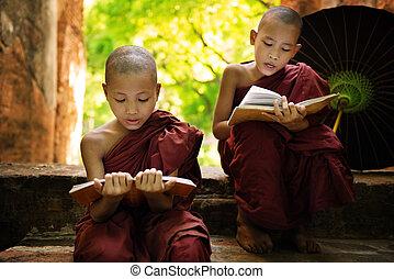 Myanmar little monk reading book outside monastery -...