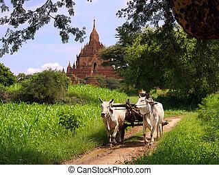 Myanmar vintage landscape - Rural vintage scene of Myanmar...