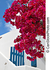 Mykonos island in Greece - Old traditional house at Mykonos...
