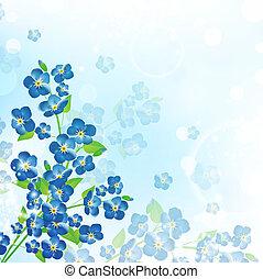 myosotis, fleur, fond