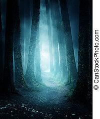 mystérieux, forêt, chemin