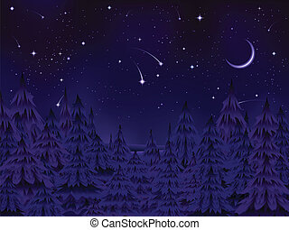 mystérieux, forêt, nuit