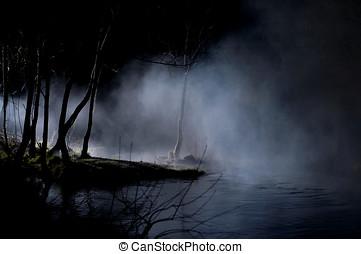 mysterieus, bomen, in, een, rondgespookte, bos