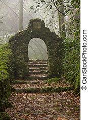 mysterieus, nevelig, ingang, florest