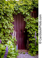 mysterieus, nieuw, muur, leven, wijngaarden, groene, ingang, begin, bedekt, of, concept, baksteen