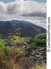 Black Mountain - mysterious Black Mountains near Cooktown...