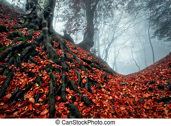 Mysterious dark autumn forest in blue fog with red leaves, trees