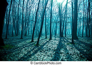 Mysterious dark old forest in fog, blue night