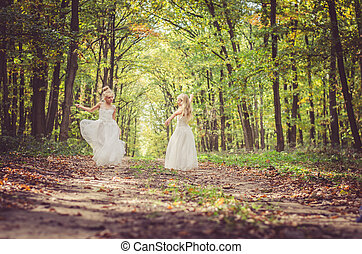 mysterious fairies in forest dancing