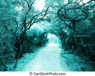 Mysterious footpath in moon light - Mysterious footpath in...
