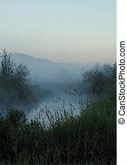 mystic - fog laying on creek