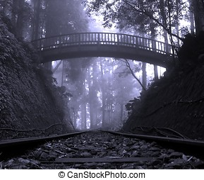 Mystic Forest - -- with wooden bridge, mist and railtracks