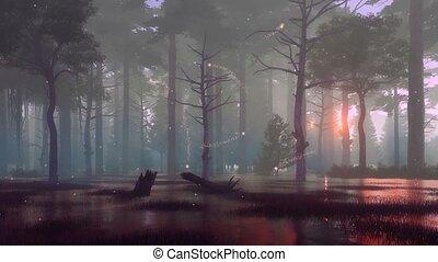 Mystic lights in dark swampy night forest 4K - Fairytale...