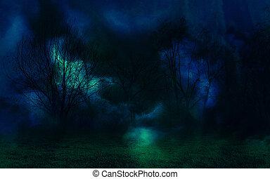 Mystic Night Forest