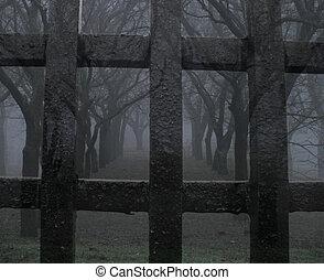 mystic park (freedom)