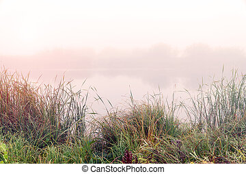 Fog in the early morning on a small lake