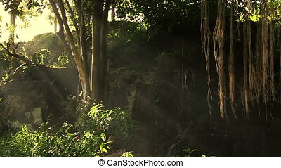 mystical waterfall in forest with rays of light