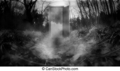 Mystical forest with doors. A mysterious door with haze.
