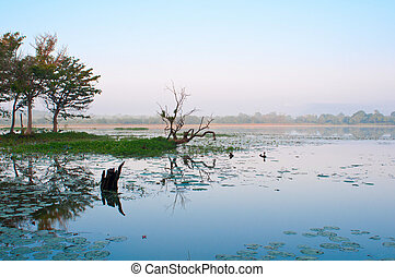 Mystical lake in tropical climate with blue morning sky