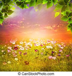 mystisch, meadow., abend, natürlich, abstrakt,...