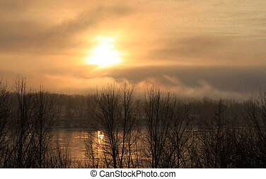 mystisk, dimma, hos, solnedgång
