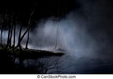 mystiske, træer, ind, en, haunted, skov