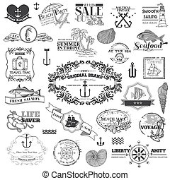 náutico, mar, calligraphic, elementos, -, para, álbum de recortes, y, diseño, en, vector